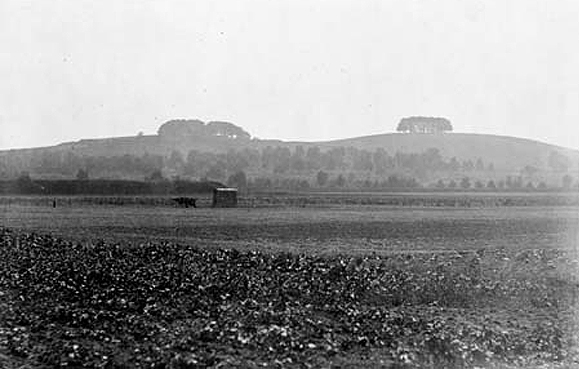A photo of Wittenham Clumps by Henry Taunt 1912