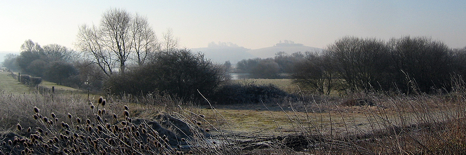 Wittenham Clumps in the winter mist