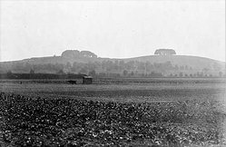 A black & White photo of Wittenham Clumps taken by Henry Taunt 1912